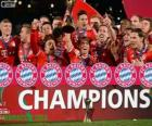 Bayern de Munique, Campeão da Copa do Mundo de Clubes 2013