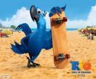 Blu é uma arara divertido eo protagonista principal do filme Rio