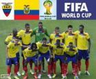 Seleção do Equador, Grupo E, Brasil 2014