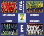 Grupo E, Brasil 2014