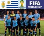 Seleção do Uruguai, Grupo D, Brasil 2014