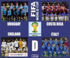 Grupo D, Brasil 2014