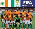 Seleção da costa do Marfim, Grupo C, Brasil 2014