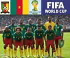 Seleção de Camarões, Grupo A, Brasil 2014