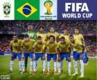 Seleção do Brasil, Grupo A, Brasil 2014