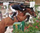 Cavalo e cavaleiro passando um obstáculo em um concurso de saltos