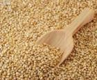 Sementes de quinoa