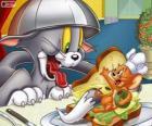 Tom e Jerry em outro de seus conflitos
