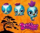 Pássarinho Zooble de Petagonia