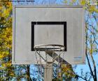 Tabela basquete