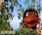 Cocoricó Oriba