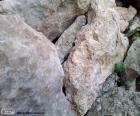 Pedras de diferentes tamanhos como decoração para jardim