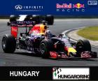 Daniel Ricciardo G.P da Hungria 15