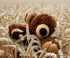 Urso de pelúcia, cereais