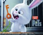 Snowball, um coelho branco