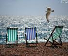 Cadeiras e gaivota