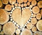 Tronco em forma de coração