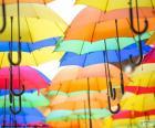 Guarda-chuva de cores
