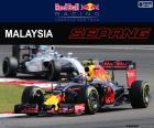 M.Verstappen, GP Malásia de 2016