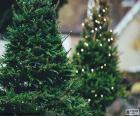 Duas árvores de Natal decorada com pequenas luzes brancas