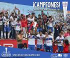 Universidad Católica, campeão de 2016