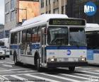 Ônibus urbano de Nova York