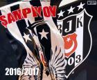 Beşiktaş, campeão de 2016-2017