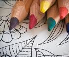 Puzle Livro de colorir