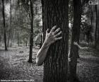 A floresta do terror