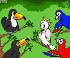 Cinco aves de Julieta Vitali