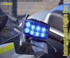 Dia Internacional da Polícia