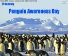 Dia da Conscientização dos Pinguins