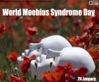 Dia Mundial da Síndrome de Moebius