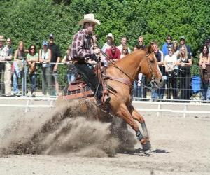 Puzle Reining Andar - Western - Ride Cowboy