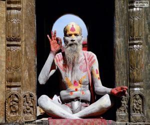 Puzle Religião na Índia