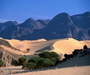Puzle Reservas Naturais do Ar e Tenere, Niger