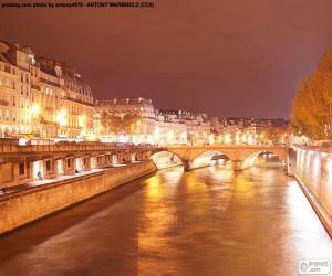 Puzle Rio Sena, à noite, Paris