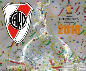 Puzle River, campeão da Libertadores da América de 2018
