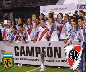 Puzle River Plate, campeão Torneo Final Argentinan 2014