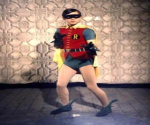 Puzle Robin