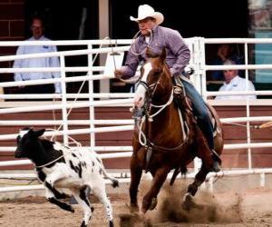 Puzle Rodeo americano