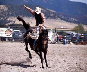Puzle Rodeo - Cavaleiro na prova do cavalo com sela, cavalgando um cavalo selvagem