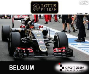 Puzle Romain Grosjean, GP Bélgica 2015