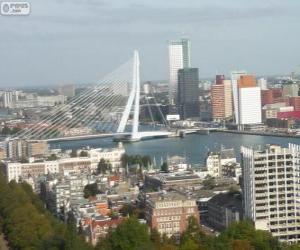 Puzle Rotterdam, Países Baixos