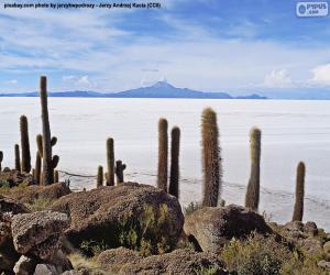 Puzle Salar de Uyuni, Bolívia