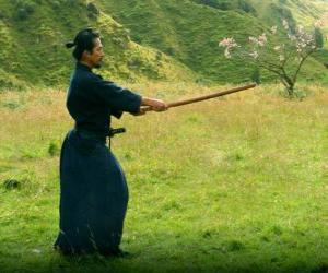Puzle Samurai de treinamento