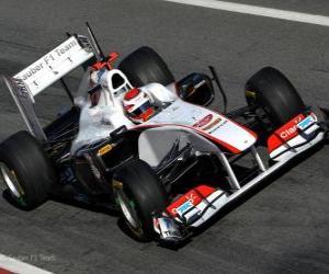 Puzle Sauber C30 - 2011 -