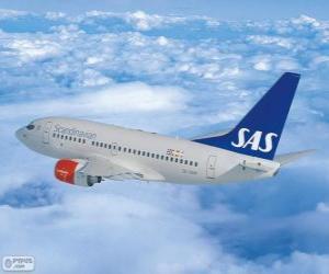 Puzle Scandinavian Airlines System, é uma companhia multinacional