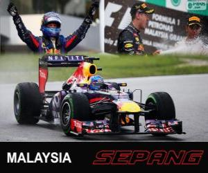Puzle Sebastian Vettel comemora sua vitória no Grande Prêmio da Malásia 2013