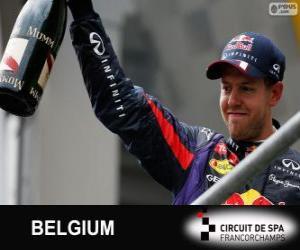 Puzle Sebastian Vettel comemora sua vitória no Grande Prémio do Bélgica 2013